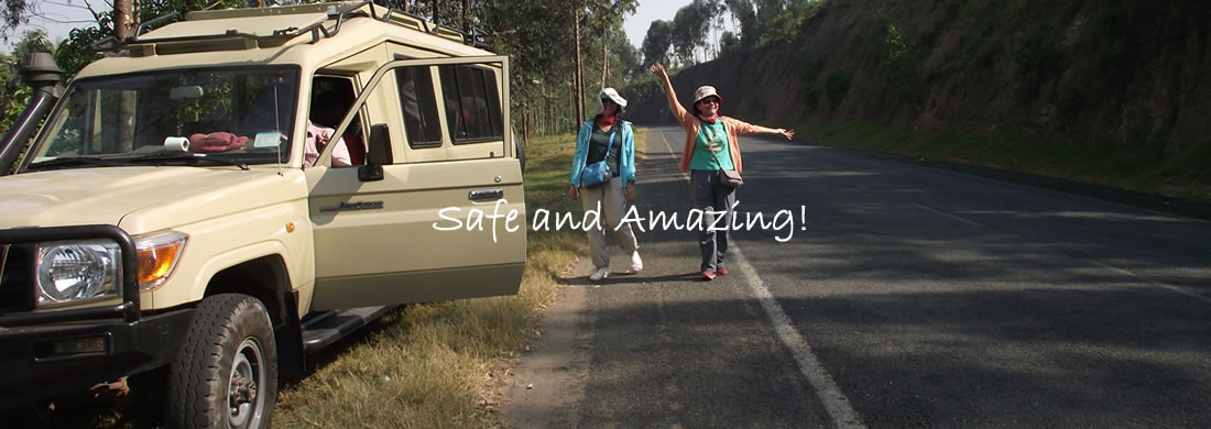 Safe Safari Vehicles
